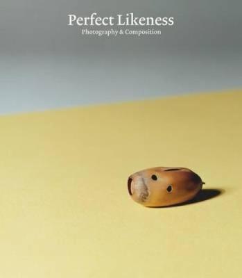 Perfect Likeness by Russell Ferguson