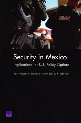 Security in Mexico by Agnes Gereben Schaefer