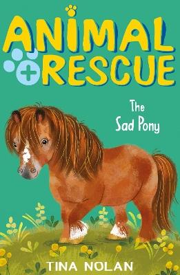 The Sad Pony by Tina Nolan