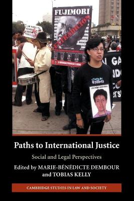 Paths to International Justice book