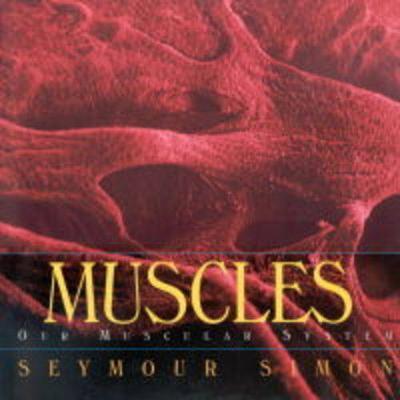 Muscles by Seymour Simon
