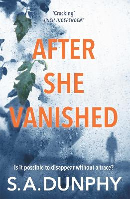After She Vanished by S. A. Dunphy
