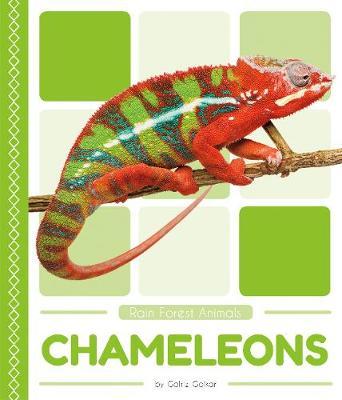 Chameleons by Golriz Golkar