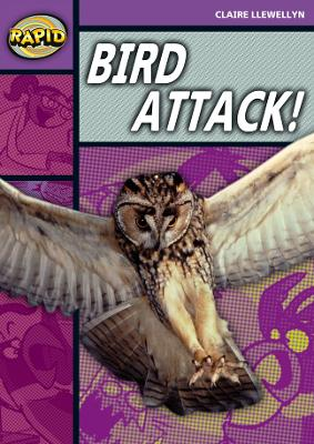 Rapid Stage 1 Level B: Bird Attack! (Series 2) by Claire Llewellyn