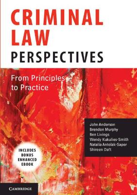 Criminal Law Perspectives: From Principles to Practice by John Anderson