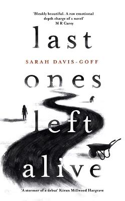 Last Ones Left Alive: The 'fiercely feminist, highly imaginative debut' - Observer by Sarah Davis-Goff