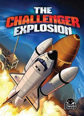 The Challenger Explosion by Adam Stone