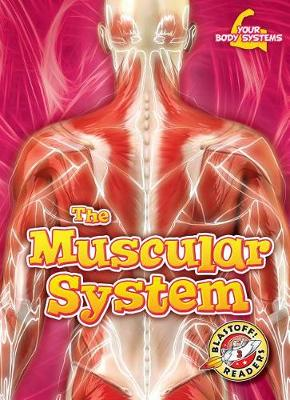 The Muscular System by Rebecca Pettiford