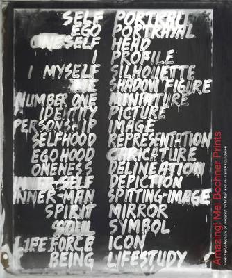 Amazing! Mel Bochner Prints: From the Collections of Jordan D. Schnitzer and His Family Foundation by Carolyn Vaughan