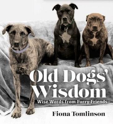 Old Dogs' Wisom by Fiona Tomlinson
