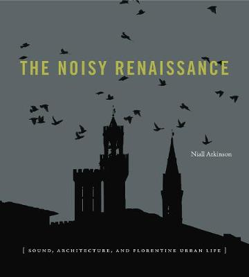 Noisy Renaissance book