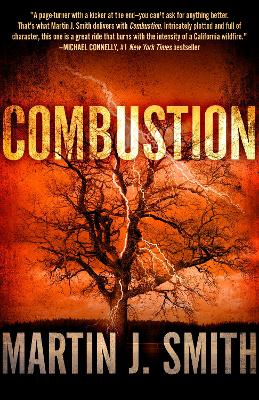 Combustion by Martin J. Smith