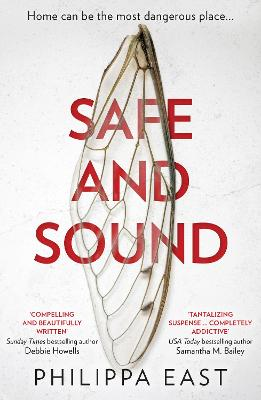Safe and Sound book