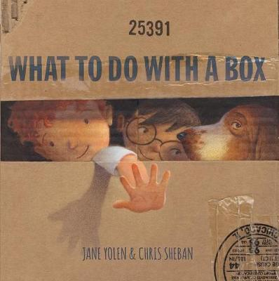 What to Do with a Box book