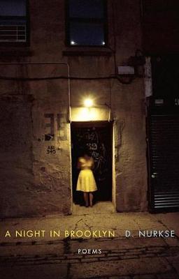 A Night in Brooklyn by D Nurkse