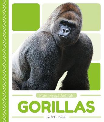 Gorillas by Golriz Golkar