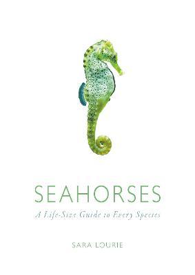 Seahorses by Sara A. Lourie