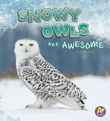Snowy Owls are Awesome by Jaclyn Jaycox