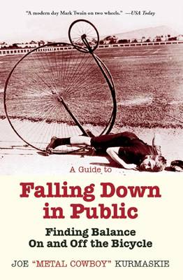 Guide to Falling Down in Public book