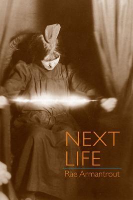 Next Life book