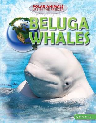 Beluga Whales by Ruth Owen
