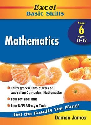 Excel Basic Skills - Mathematics Year 6 book