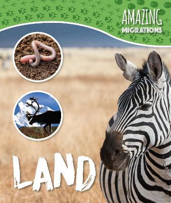 Land by Harriet Brundle
