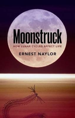 Moonstruck by Ernest Naylor
