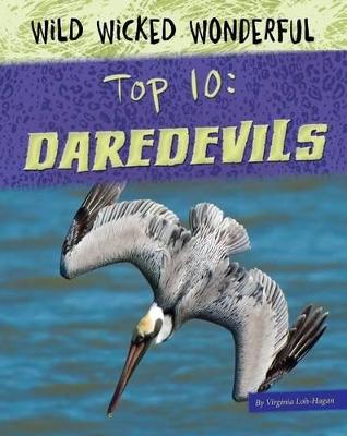 Daredevils by Virginia Loh-Hagan