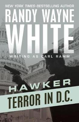 Terror in D.C. by Randy Wayne White