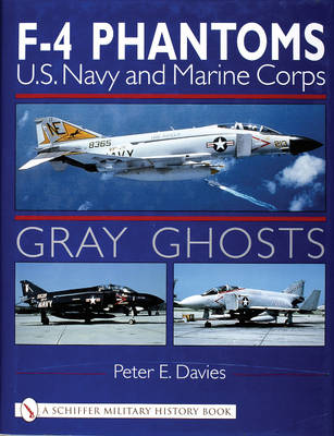 Gray Ghosts by Peter E. Davies