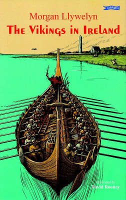 The Vikings in Ireland book