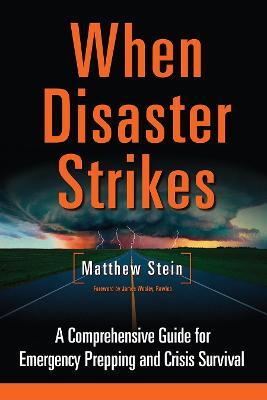 When Disaster Strikes by Matthew Stein