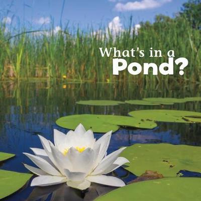 What's in a Pond? by Martha Elizabeth Hillman Rustad