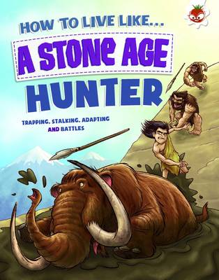 Stone Age Hunter by Anita Ganeri