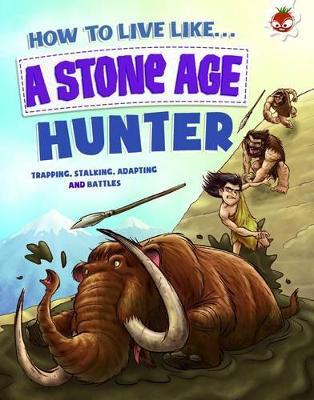 Stone Age Hunter by Anita Ganeri