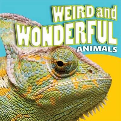 Weird and Wonderful Animals by Brenda Clarke, Helen Orme, Barbara Taylor, Brian Williams