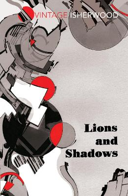 Lions and Shadows book