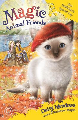 Magic Animal Friends: Ava Fluffyface's Special Day book