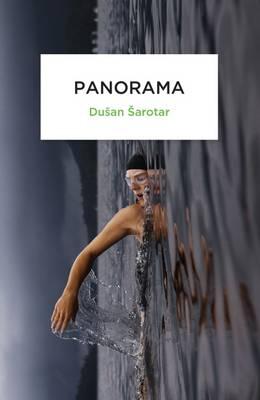 Panorama by Dusan Sarotar