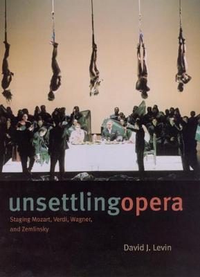 Unsettling Opera by David J. Levin