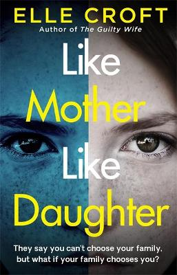 Like Mother, Like Daughter: A gripping and twisty psychological thriller exploring who your family really are book