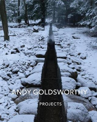 Andy Goldsworthy: Projects book
