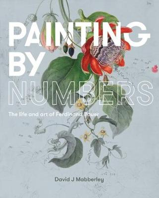 Painting by Numbers book