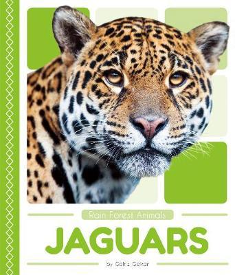 Jaguars by Golriz Golkar