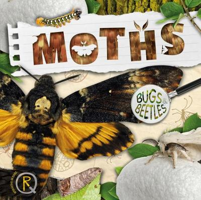 Moths by William Anthony