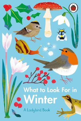 What to Look For in Winter book