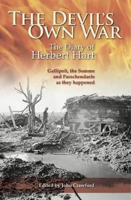 Devil's Own War book