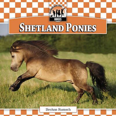 Shetland Ponies by Breann Rumsch