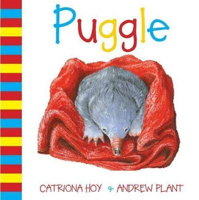 Puggle by Catriona Hoy